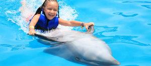 Играть с дельфином