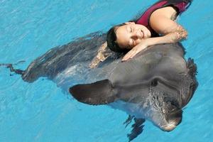 Наслаждаться общением с дельфином во сне