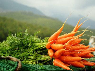 Сонник чистую морковку