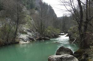 К чему снится медкая река