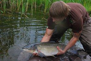 Что значит ловить рыбу руками во сне