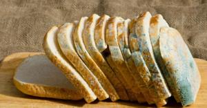 Видеть хлеб с плесенью - к болезни