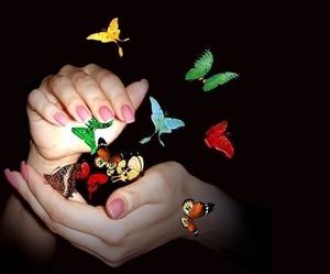 Играть с бабочками в сновидении