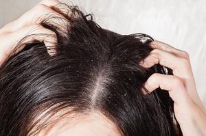 Когда приснилась стрижка волос